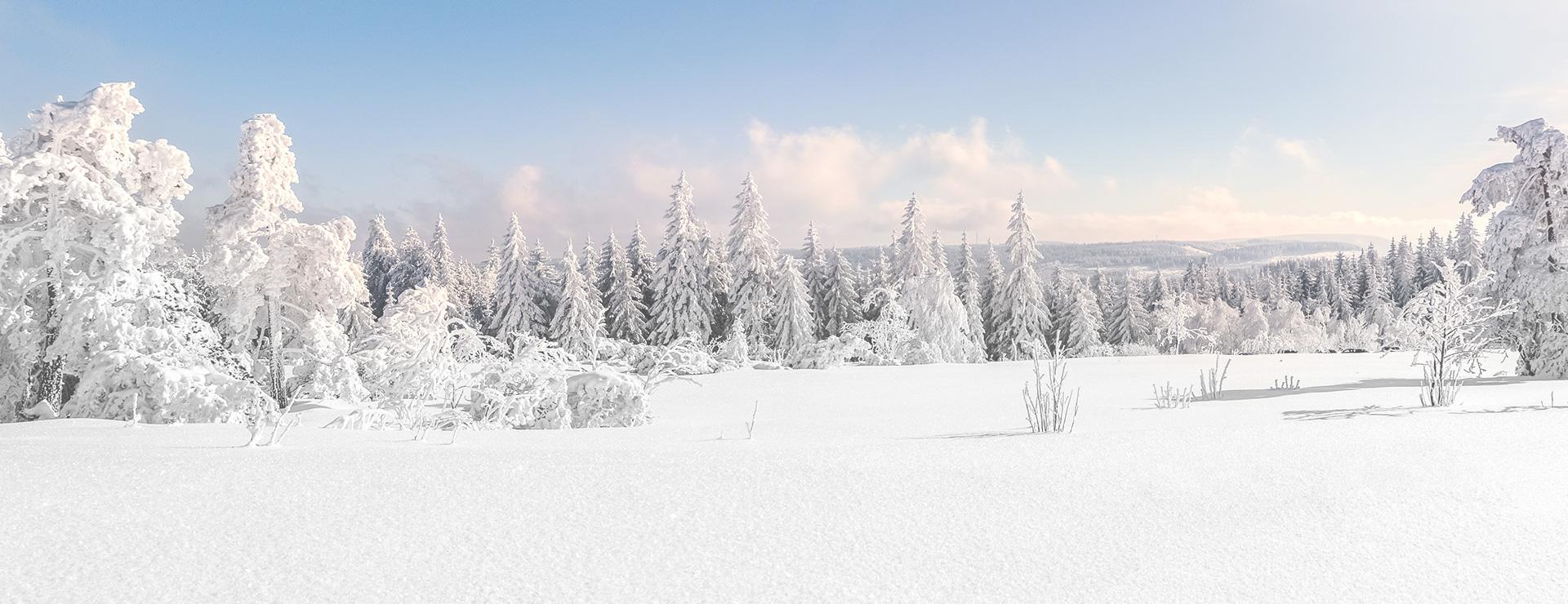slider-weihnachten-bg